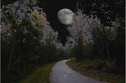 Full moon on the trail